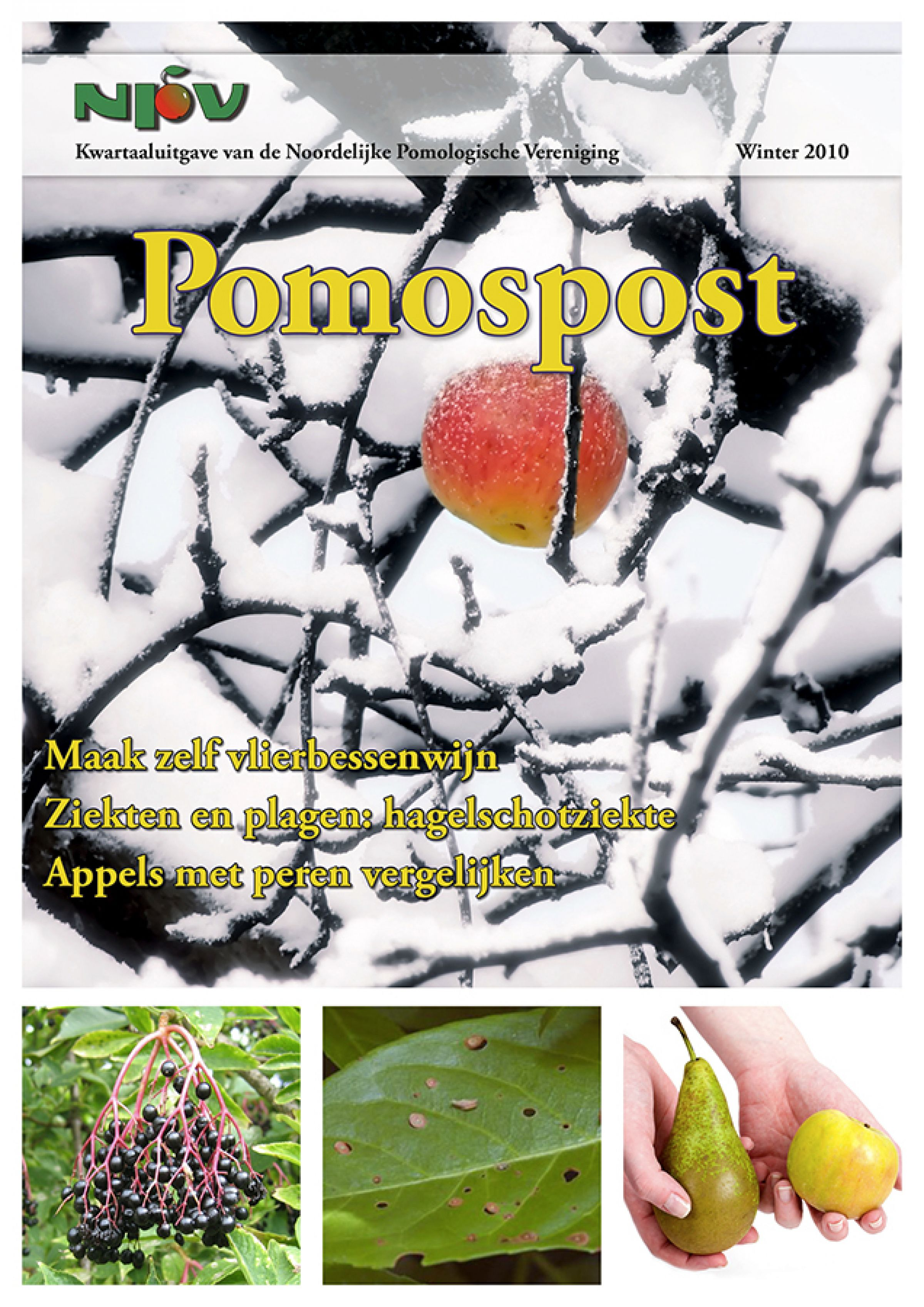 Pomospost 2010 winter 900